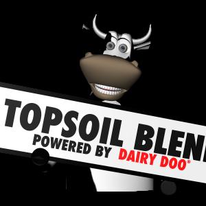 TSB DDoo